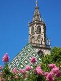 Duomo, Walther Platz, Bolzano, Bolzano Province, Trentinto-Alto Adige, Italy, Europe Photographic Print by Frank Fell