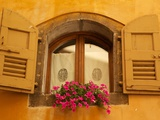 Shuttered Window and Flowers, Piazza Mercato, Belluno, Province of Belluno, Veneto, Italy, Europe Photographic Print by Frank Fell