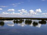 Lake Titicaca, Peru, Peruviann, Latin America, Latin American South America Photographic Print by Simon Montgomery