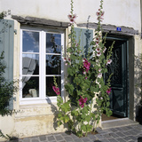 Typical Scene of Shuttered Windows and Hollyhocks, St. Martin, Ile de Re, Poitou-Charentes, France Fotografie-Druck von Stuart Black
