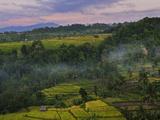 Rainforest and Fields, Senaru, Lombok, Indonesia, Southeast Asia, Asia Photographic Print by Jochen Schlenker