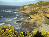 Cliffs Near Findhorn on the Morayfirth, Scotland, United Kingdom, Europe Photographic Print by David Lomax