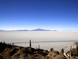 Cacti on Isla de Los Pescadores, Volcan Tunupa and Salt Flats, Salar de Uyuni, Bolivia Photographic Print by Simon Montgomery