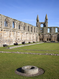 St Andrews Cathedral, St Andrews, Fife, Scotland Photographic Print by Mark Sunderland