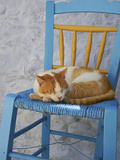 Chora, Amorgos, Cyclades, Aegean, Greek Islands, Greece, Europe Photographic Print by  Tuul
