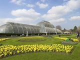 Palm House in Spring, Royal Botanic Gardens, Kew, UNESCO World Heritage Site, London, England, UK Photographic Print by Peter Barritt