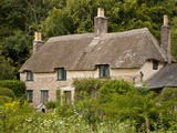 Thomas Hardy's Cottage, Higher Bockhampton, Near Dorchester, Dorset, England, UK, Europe Photographic Print by Neale Clarke