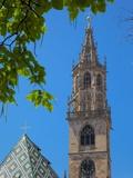 Duomo, Walther Platz, Bolzano, Bolzano Province, Trentino-Alto Adige, Italy, Europe Photographic Print by Frank Fell