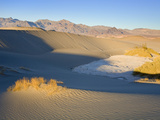 Mesquite Flat Sand Dunes, Death Valley National Park, California, USA, North America Photographic Print by Richard Cummins