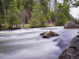 River in Yosemite National Park, UNESCO World Heritage Site, Yosemite, California, USA Photographic Print by Antonio Busiello