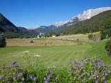 Hay Field Near Canazei, Canazei, Trentino-Alto Adige, Italy, Europe Photographic Print by Frank Fell