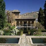 View over Gardens, Alhambra Palace, UNESCO World Heritage Site, Granada, Andalucia, Spain, Europe Fotografie-Druck von Stuart Black