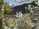 Spring View, Pedoulas, High Troodos Mountains, Cyprus, Europe Photographic Print by Stuart Black