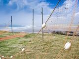 Fishing Nets Drying, Gourdon Bay, Scotland, United Kingdom, Europe Photographic Print by Andrew Stewart