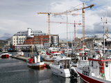 Local Fishing Boats and Cranes Working on New Library Site for North Norway, Bodo Harbour, Norway Photographic Print by David Lomax