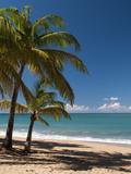 La Perle Beach, Deshaies, Basse-Terre, Guadeloupe, French Caribbean, France, West Indies Photographie par Sergio Pitamitz
