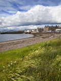Windswept Grasses by the Shingle Beach at Broughty Ferry, Dundee, Scotland, United Kingdom, Europe Photographic Print by Mark Sunderland