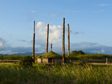 Traditional Hut with Poles on West Coast of Grand Terre, New Caledonia, Melanesia, South Pacific Photographic Print by Michael Runkel