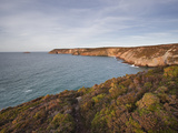 The Coastline of Brittany on Cap Frehel, Cote D'Emeraude (Emerald Coast), Brittany, France, Europe Photographic Print by Julian Elliott