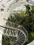 Staircase in Temperate House, Royal Botanic Gardens, UNESCO World Heritage Site, London, England Photographic Print by Peter Barritt