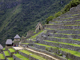Agricultural Terraces , Machu Picchu, Peru, Lost City of Inca Rediscovered by Hiram Bingham in 1911 Photographic Print by Simon Montgomery