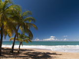 La Perle Beach, Deshaies, Basse-Terre, Guadeloupe, French Caribbean, France, West Indies Fotografisk tryk af Sergio Pitamitz