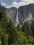 Waterfall, Yosemite National Park, UNESCO World Heritage Site, Yosemite, California, USA Photographic Print by Antonio Busiello