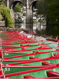 Rowing Boats on the River Nidd, Knaresborough, North Yorkshire, England Photographic Print by Mark Sunderland