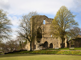 Knaresborough Castle Grounds, Knaresborough, North Yorkshire, England Photographic Print by Mark Sunderland