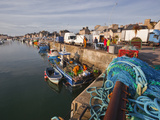 Looking Down the Harbour at Saint Vaast La Hougue, Cotentin Peninsula, Normandy, France, Europe Photographic Print by Julian Elliott