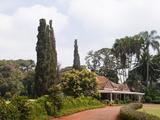 Karen Blixen's House, Nairobi, Kenya, East Africa, Africa Photographic Print by Sergio Pitamitz