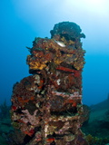 Ladder on Wreck of Lesleen M Freighter, Sunk in 1985 in Anse Cochon Bay, St Lucia Photographic Print by Lisa Collins