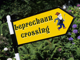 Leprechaun Crossing Signpost, County Kerry, Munster, Republic of Ireland, Europe Photographic Print by Stuart Black