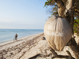 Gili Trawangan Written on a Coconut, Gili Islands, Indonesia, Southeast Asia, Asia Photographic Print by Matthew Williams-Ellis