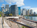 Sydney City Centre and Circular Quay at Sydney Harbour, Sydney, New South Wales, Australia, Pacific Photographic Print by Matthew Williams-Ellis