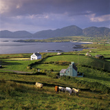 View over Allihies and Ballydonegan Bay, Beara Peninsula, County Cork, Munster, Republic of Ireland Fotodruck von Stuart Black