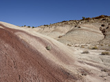 Badlands with Maroon Color, Capitol Reef National Park, Utah, USA, North America Photographic Print by James Hager