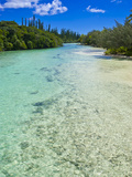 Bay de Oro, Ile Des Pins, New Caledonia, Melanesia, South Pacific, Pacific Photographic Print by Michael Runkel