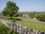 Dry Stone Walls, Hartington, Peak District, Derbyshire, England, United Kingdom, Europe Photographic Print by Frank Fell