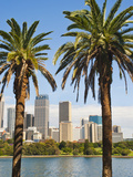 Sydney Cbd and City Centre from Sydney Botanic Gardens, Sydney, New South Wales, Australia, Pacific Photographic Print by Matthew Williams-Ellis