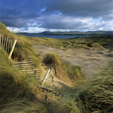 Sand Dunes, Strandhill, County Sligo, Connacht, Repubic of Ireland, Europe Photographic Print by Stuart Black