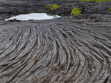 Lava Flow, Fernandina Island, Galapagos Islands, UNESCO World Heritage Site, Ecuador, South America Photographic Print by Michael Nolan