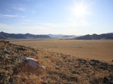 An Animal Skull on a Mongolian Hill, Mongolia, Central Asia, Asia Photographic Print by Stuart Keasley