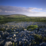 Limestone Pavement, the Burren, County Clare, Munster, Republic of Ireland, Europe Photographic Print by Stuart Black