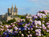 Panorama with Pink and Blue Hydrangeas and Notre Dame Cathedral, Coutances, Cotentin, France Lámina fotográfica por Guy Thouvenin