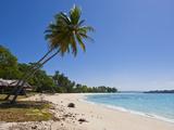 White Sand Beach in Port Orly, Island of Espiritu Santo, Vanuatu, South Pacific, Pacific Photographic Print by Michael Runkel