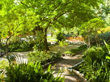 Alameda Gardens, Gibraltar, Europe Photographic Print by Giles Bracher