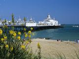 View over Beach and Pier, Eastbourne, East Sussex, England, United Kingdom, Europe Reproduction photographique par Stuart Black
