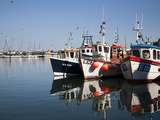 Fishing Boats in the Harbour, Scarborough, North Yorkshire, Yorkshire, England, UK, Europe Photographic Print by Mark Sunderland