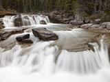 Falls on Nigel Creek, Banff National Park, UNESCO World Heritage Site, Alberta, Canada Photographic Print by James Hager